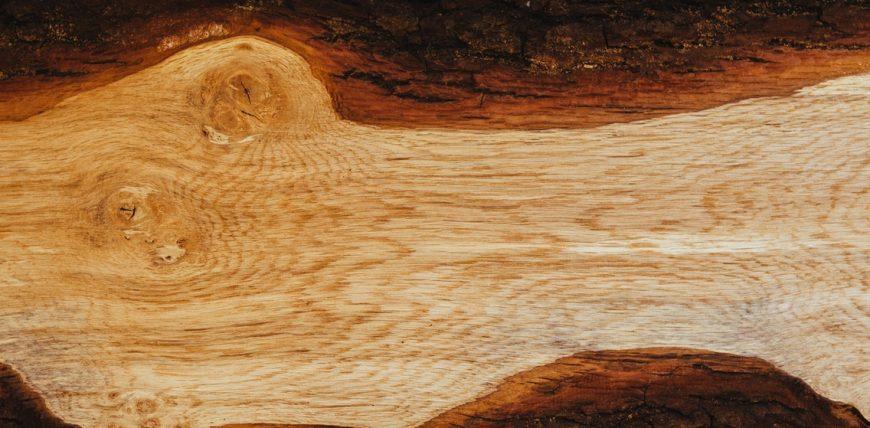 wood-tree-grain-fallen